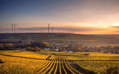 Klare Gesetze für eine naturverträgliche Energiewende